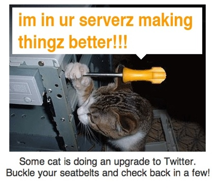 A picture of a cat doing an upgrade to the Twitter.com server.
